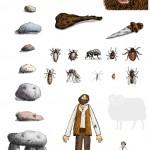 """Anja Weiss, Illustrationen aus meinem Buch """"Wo einst die wilden Riesen hausten"""""""