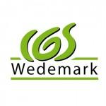 Logoentwicklung IGS Wedemark