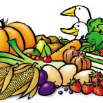 Gemüse, Geflügel, Anja Weiss, Zeichnen, Zeichnung, Graphic Recording, Sketch, Sketchnote, Skizze, Bild, Zeichenagentur, Hannover, Grafik-Design, Illustration, Food
